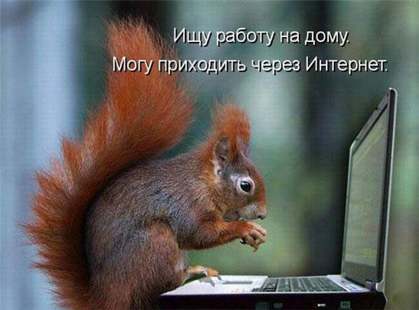 1254479911_1254472412_26
