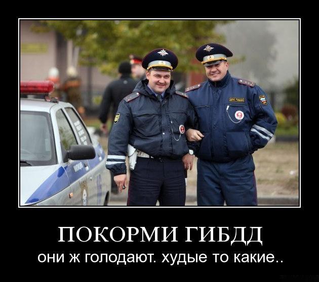 1288072221_8guay5zvyvwh