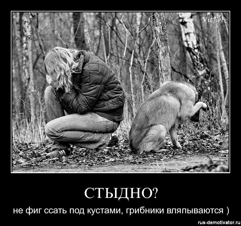 1302363938_stidno