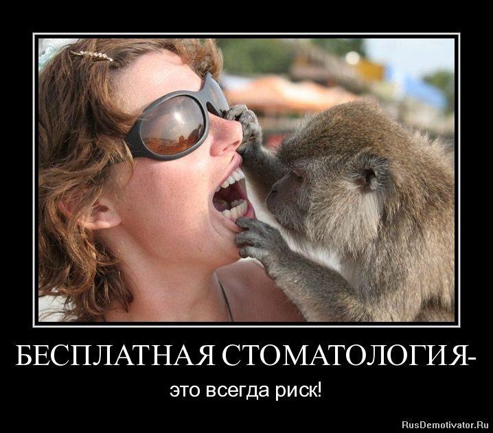 1308146515-besplatnaya-stomatologiya