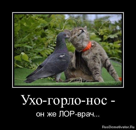 1310268409-uxo-gorlo-nos-