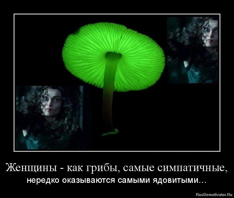 1358541729-zhenshhiny-kak-griby-samye-simpatichnye