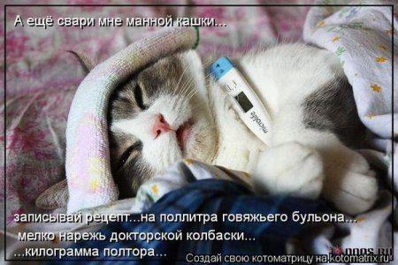 1361483636_kotomatrix_38