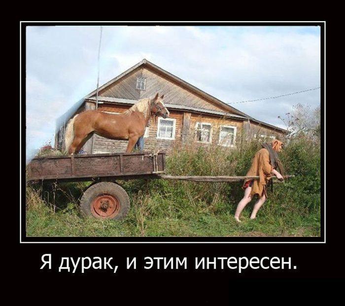 1478458714_demotivatory-10_xaxa-net-ru