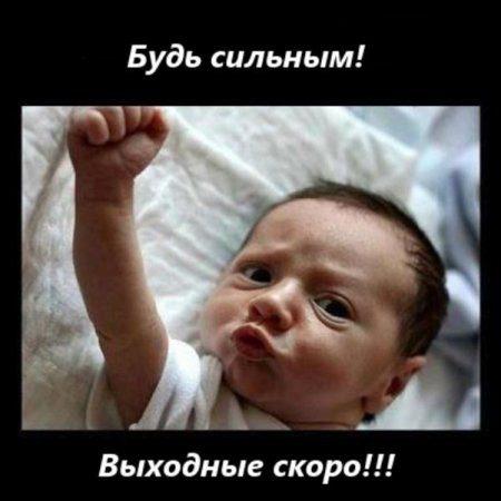 1_1369902011_image-25