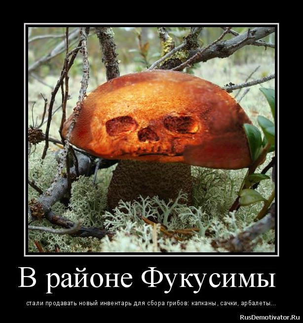 2012113012454973