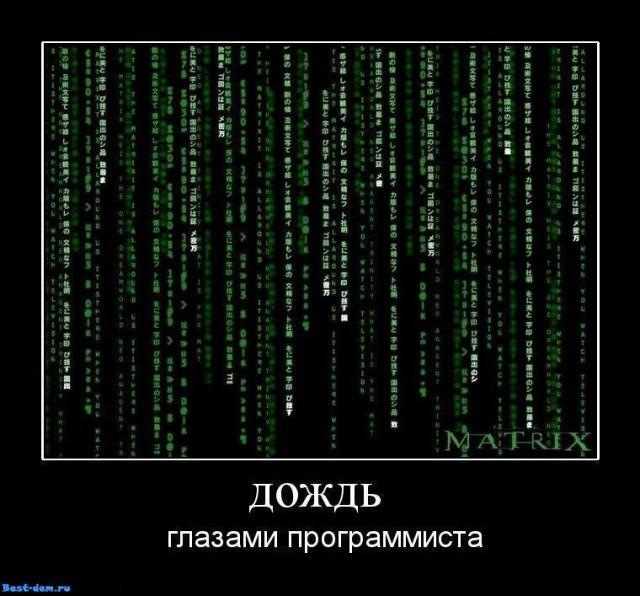 Приколы картинки программистов