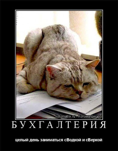Поздравление с днем россии прикол фото 203