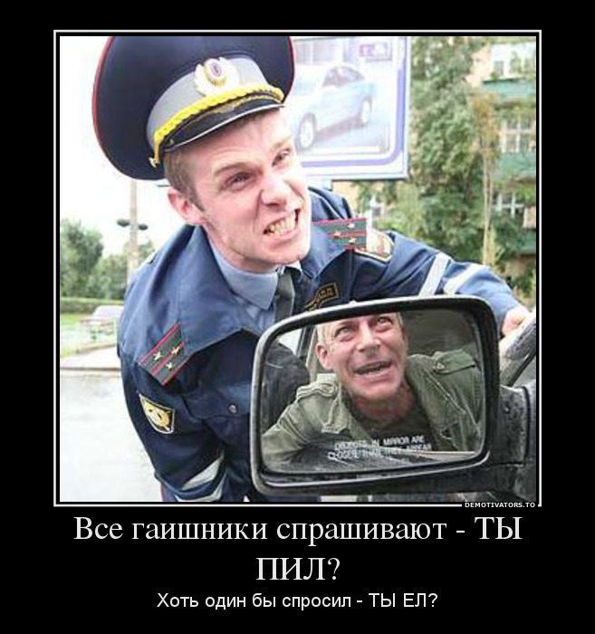 67800956_vse-gaishniki-sprashivayut-tyi-pil