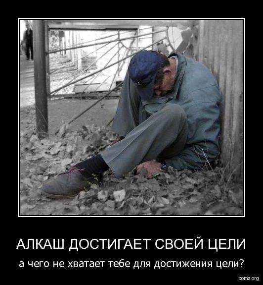689441-2010.02.17-05.46.17-alkash