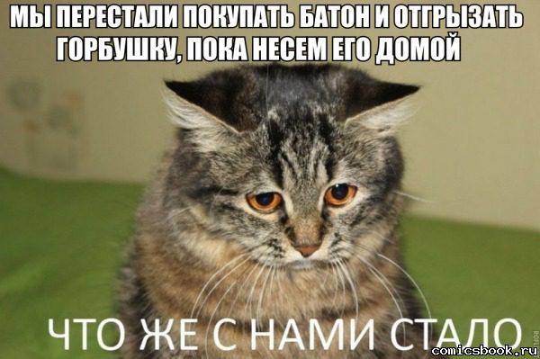 prikol-zhizn-tlen-106829