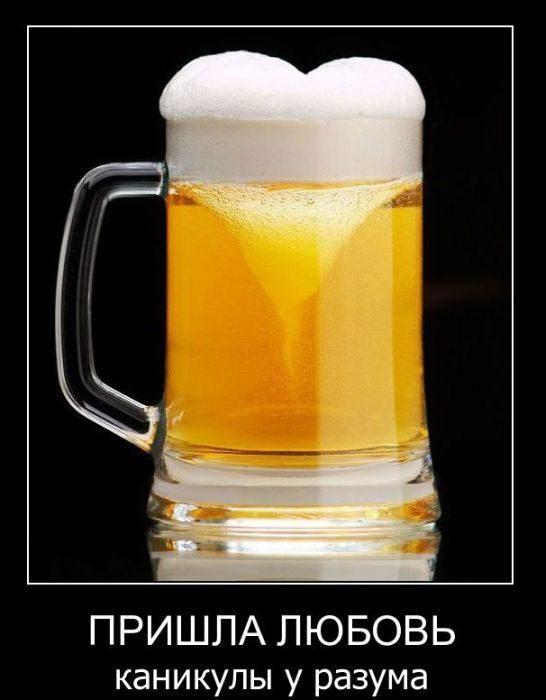 beer-demotivator-65