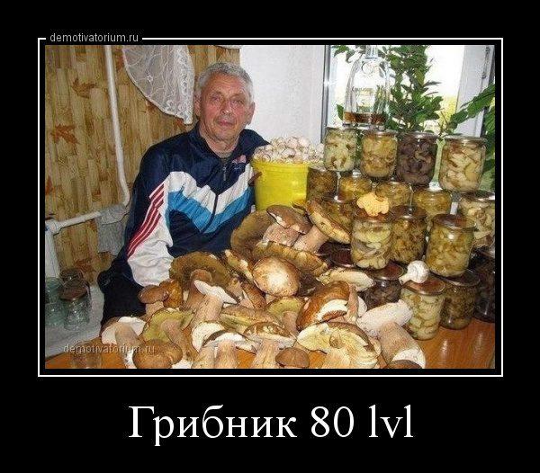demotivatorium_ru_gribnik_80_lvl_45186
