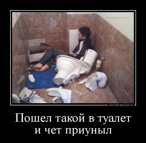 demotivatorium_ru_poshel_takoj_v_tualet_i_chet_priunil_82959