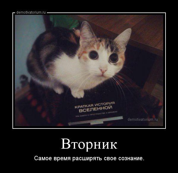 demotivatorium_ru_vtornik_70716