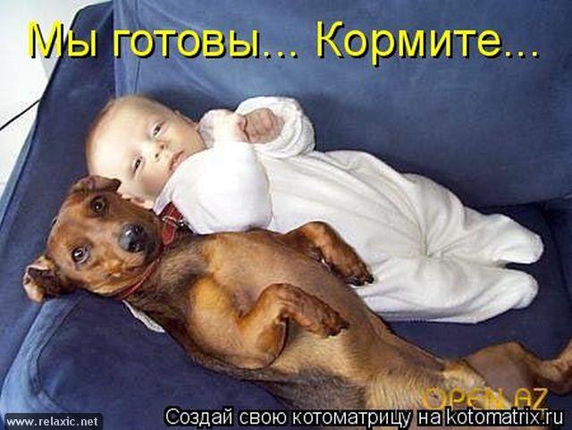 kotomatrix_0651