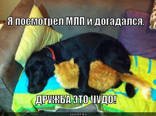 mlp-ne-ne-slyshal-_1388681542