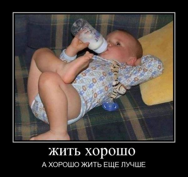 smeshnie_kartinki_143078081719