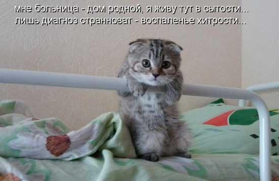 statusy_pro_bolnicu_01