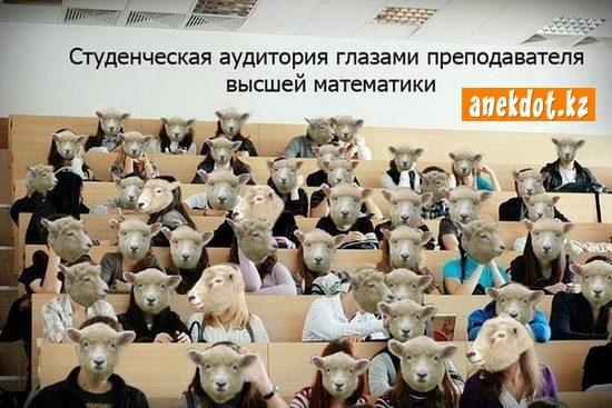 studencheskaya-auditoriya-glazami-prepodavatelya-vysshey-matematiki