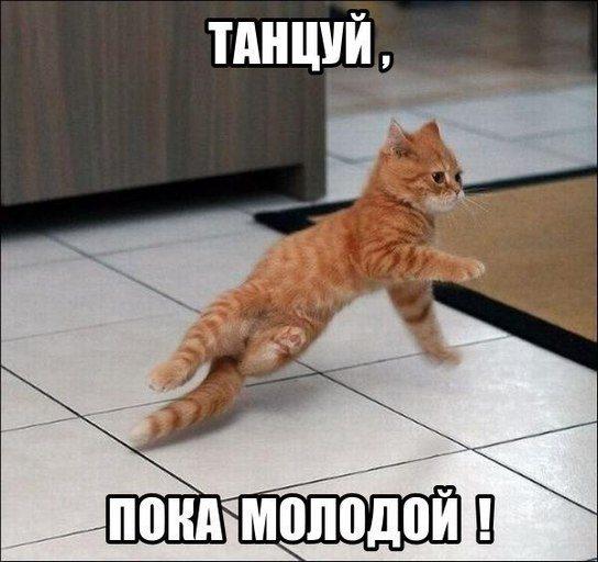 tancuj-poka-molodoj-list