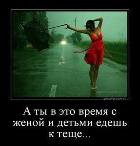 tmb_demotivatorium_ru_a_ti_v_eto_vremja_s_jenoj_i_detmi_edesh_k_teshe_98451