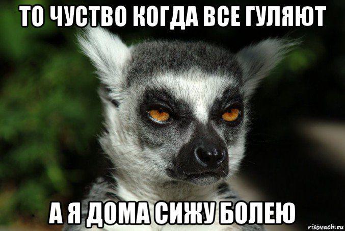 uzbagoisya_68467107_orig_