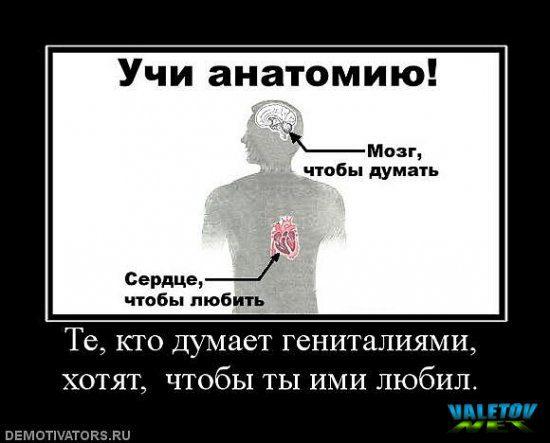 valetov_net_imgid_303601
