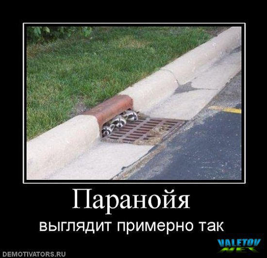 valetov_net_imgid_303898
