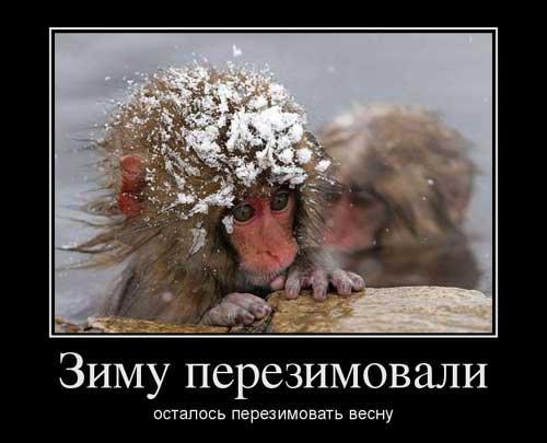 vyskazyvaniya_pro_pogodu
