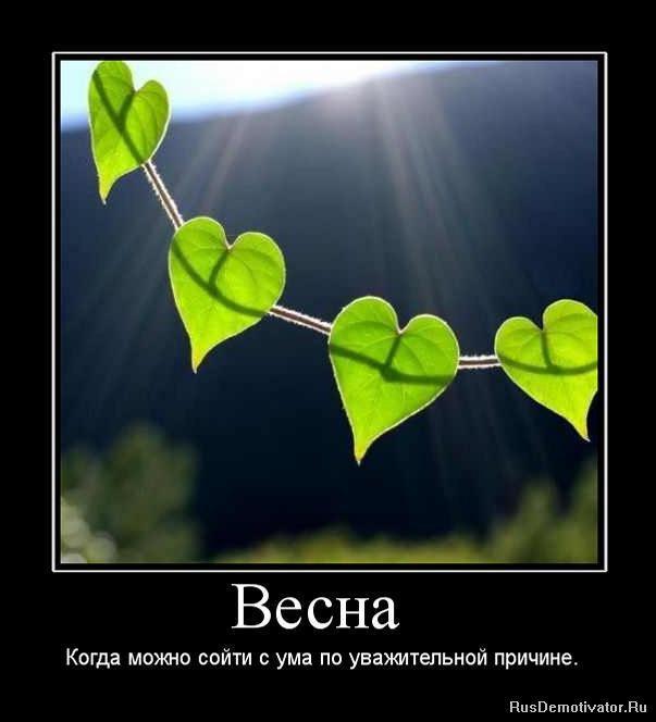 110607496_vesna_lyubov