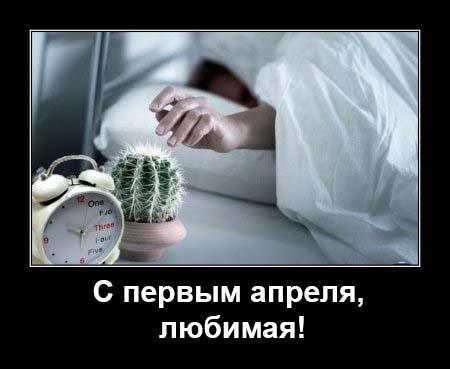 111474644_1_aprelya