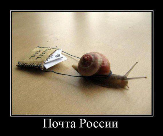 1366820840_prikol-demotivatory-5