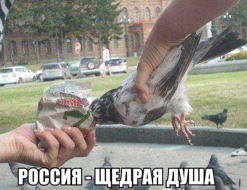 1425896094_edx19buavne