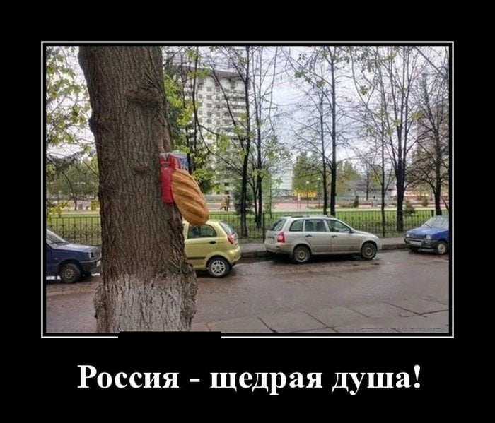 Смешные картинки жизнь в россии