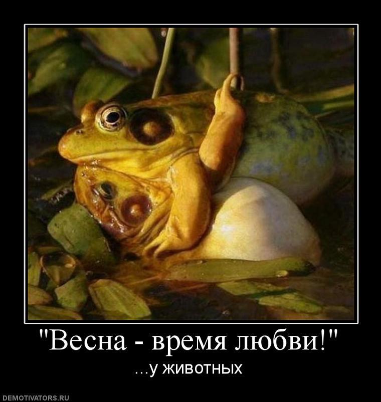 994591_vesna-vremya-lyubvi