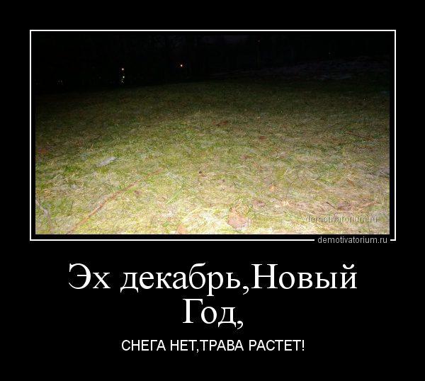 demotivatorium_ru_eh_dekabrnovij_god_36618