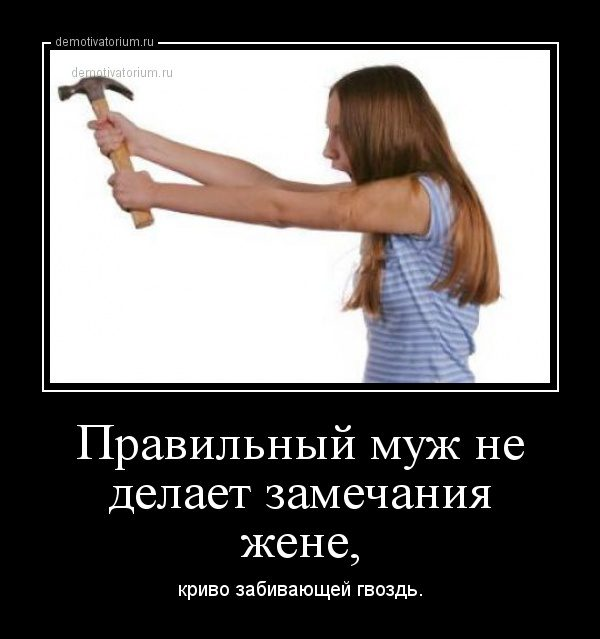 demotivatorium_ru_pravilnij_muj_ne_delaet_zamechanija_jene_48788
