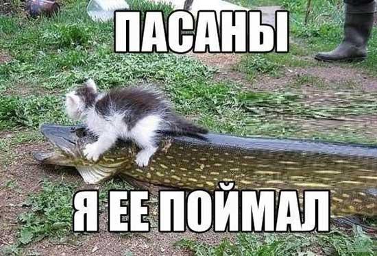 pro_rybalku_04