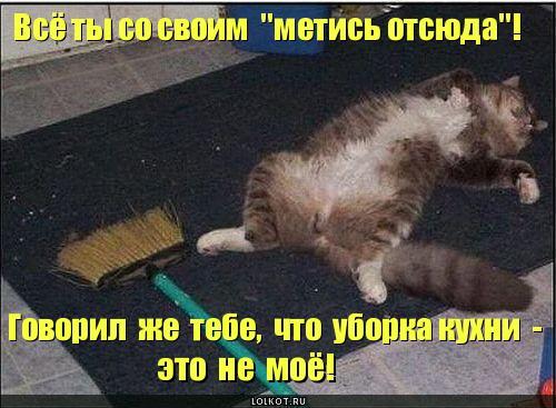 uborka-kuhni_1282586651