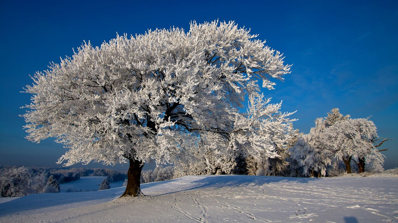 winter-images-1366x768-18