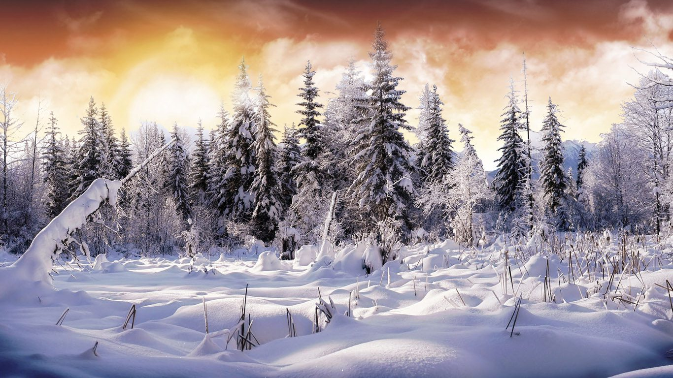 winter-wallpaper-1366x768 (1)