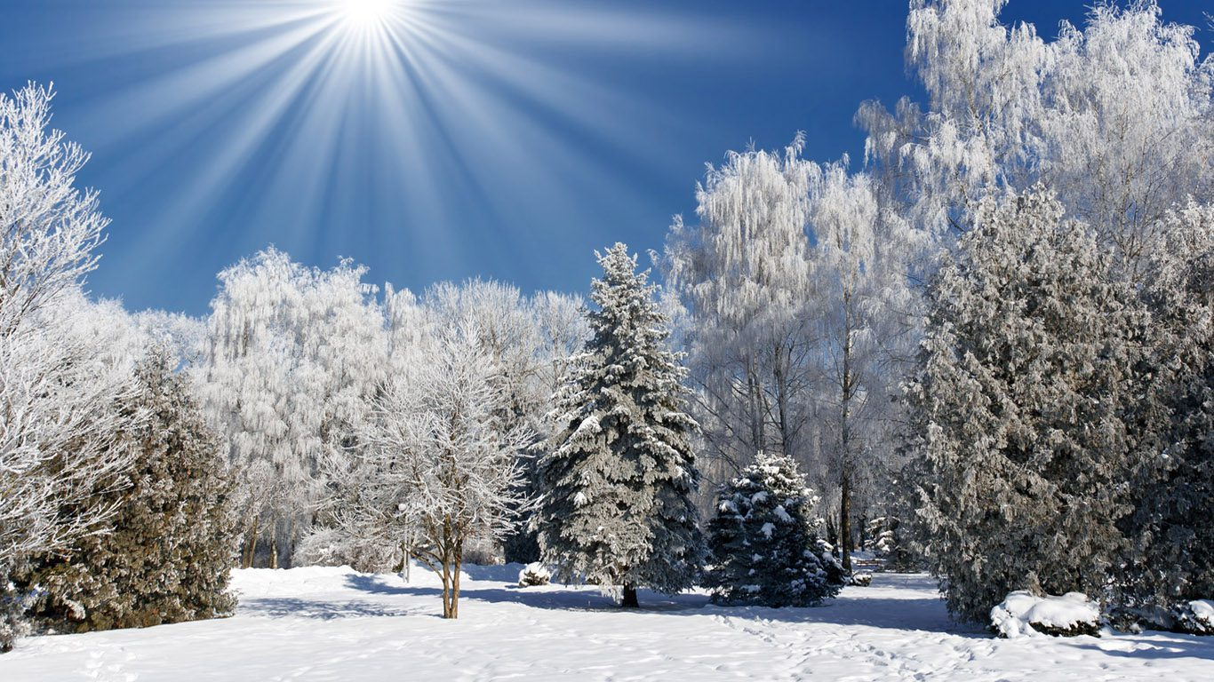 winter-wallpaper-1366x768