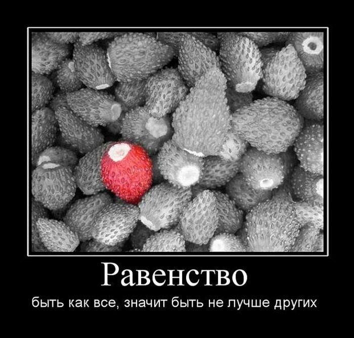 1486417009_29.jpg