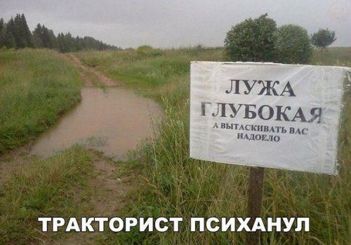 1488542554_avtoprikoly-6.jpg