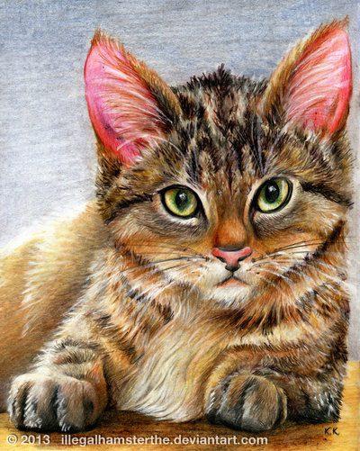 Кот в сапогах картинки: 21 тыс изображений найдено