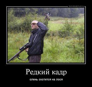 Идет охота