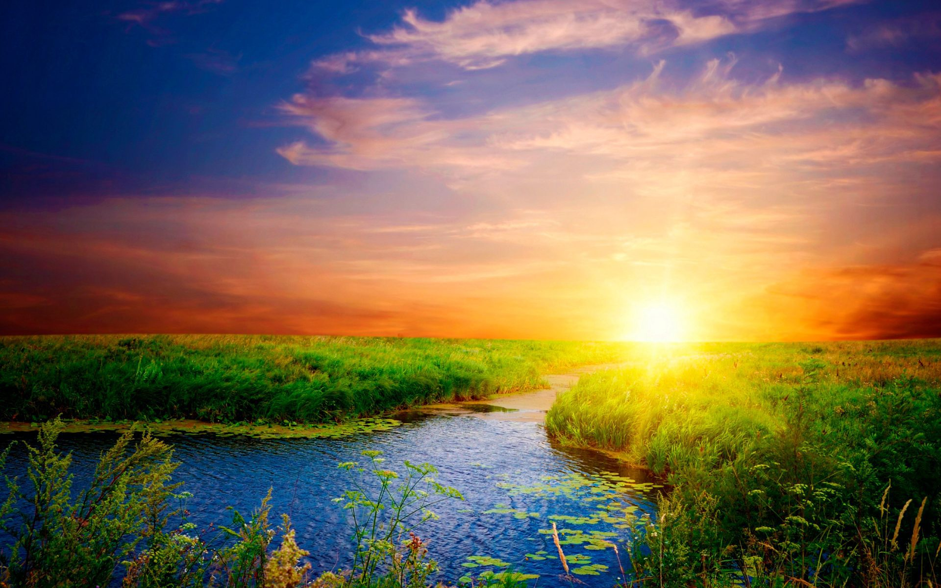 Солнце море картинка