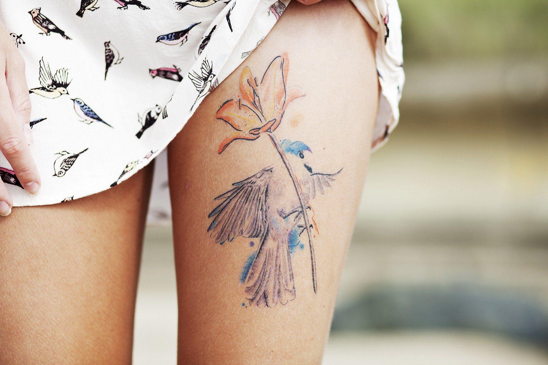 Фото синие хризантемы