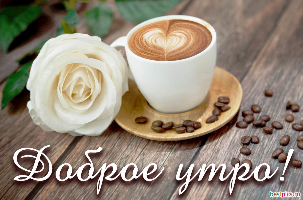 кофе и цветы - с добрым утром